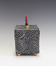 Black Optix Box by Vaughan Nelson (Ceramic Box)
