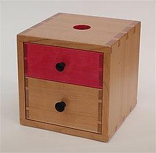 Piggy Bank Box III by Todd  Bradlee (Wood Box)