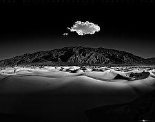 Moonlight Serenade by Matt Anderson (Black & White Photograph)