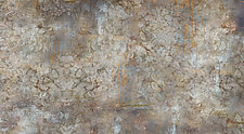 Eroded Damask by Lisa A. Frank (Color Photograph)