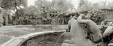 Cherub Fountain - Dumbarton Oaks by Mel Curtis (Black & White Photograph)