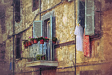 Roma #135v2 2010 by Mel Curtis (Color Photograph)