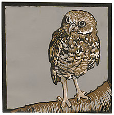 Burrowing Owl by Barbara  Stikker (Linocut Print)