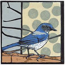 Scrub Jay by Barbara  Stikker (Linocut Print)