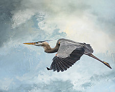 Great Blue Beyond by Melinda Moore (Color Photograph)