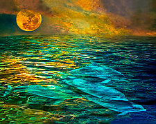 Moon Dolphins by Melinda Moore (Mixed-Media Photograph)