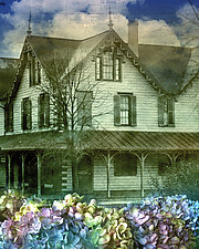 It Has Always Been Like This by Eugenie Torgerson (Color Photograph)