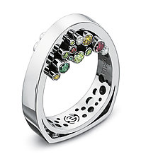 Hollein Ring by Erik Stewart (Platinum & Stone Ring)