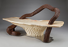Serpentine Bench by Aaron Laux (Wood Bench)
