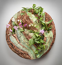 Root System Living Wall by Aaron Laux (Wood Wall Sculpture)