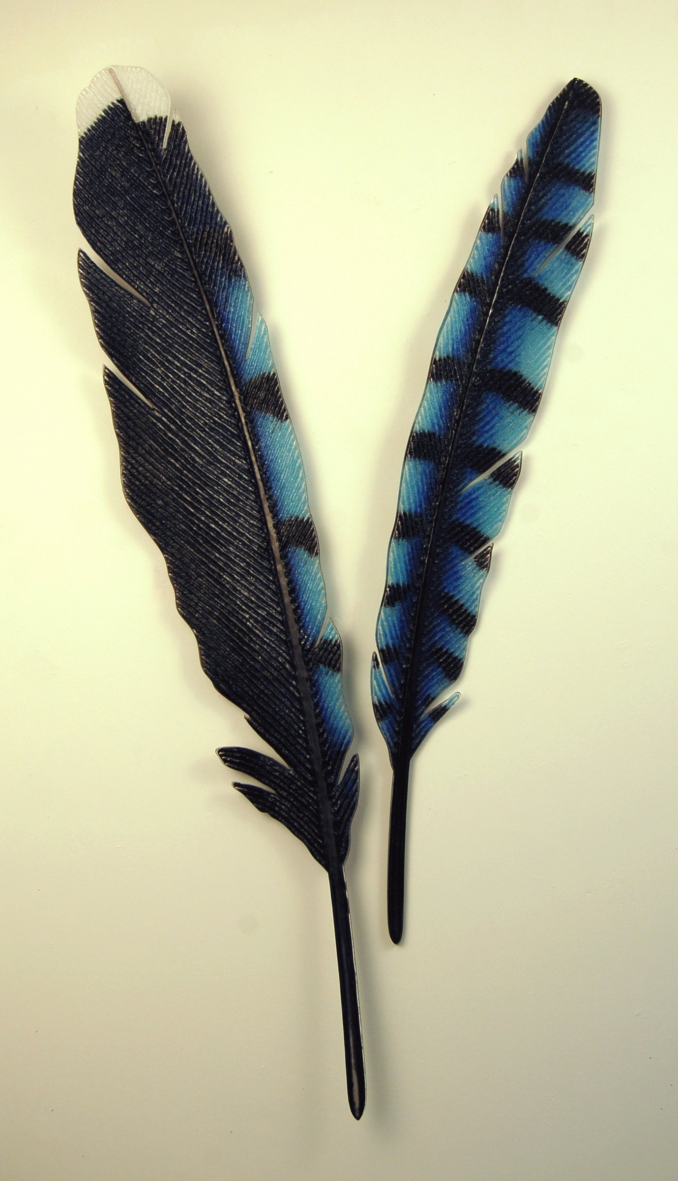 Bluejay Feather Set