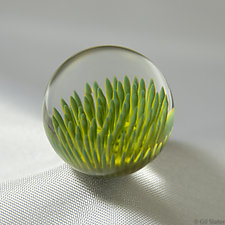 Special Anemone by Aaron Slater (Art Glass Paperweight)