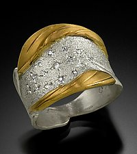 Band Ring by Rosario Garcia (Gold, Silver & Stone Ring)