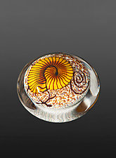 Gold Nautilus on Cream Paperweight by Richard Satava (Art Glass Paperweight)