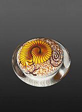 Gold Nautilus on Cream Paperweight by Richard Satava (Art Glass Paperweight)