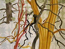 Spanish Trees by Meredith Nemirov (Watercolor Painting)