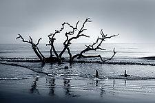 Boneyard Dawn by Richard Speedy (Black & White Photograph)