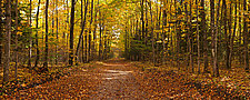 Long Way to Go by Terry Thompson (Color Photograph)