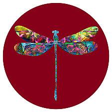 Dragonfly Circle 1 by Dario Preger (Color Photograph)