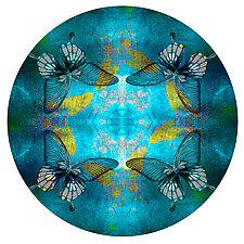 Circle 109 by Dario Preger (Color Photograph)