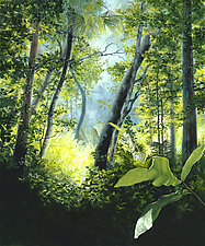 Golden Fern Glade by Carin Wagner (Giclee Print)
