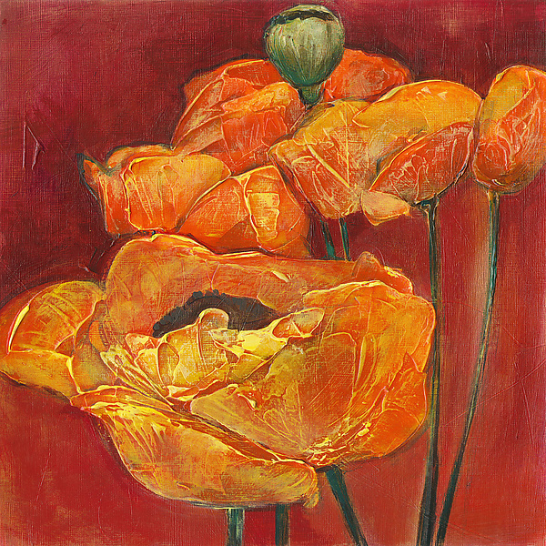 Orange on Red Poppies