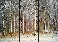 First Snow (Triptych) by James Bourret (Color Photograph)