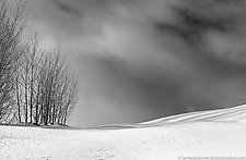Winter Stillness by James Bourret (Black & White Photograph)