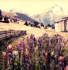Les 2 Alps by Julie Betts Testwuide (Color Photograph)