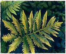 Golden Fern by Jane Sterrett (Giclee Print)