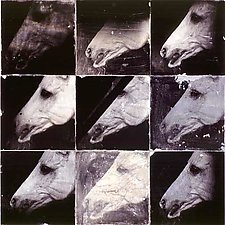 Nine Horses by John Maggiotto (Black & White Photograph)