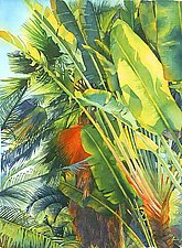 Cayman Palm by Marlies Merk Najaka (Giclee Print)