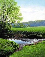 Spring Morning - Elvers Creek by Steven Kozar (Giclee Print)