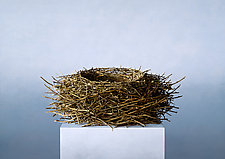 Nest by Christopher Young (Pigment Print)