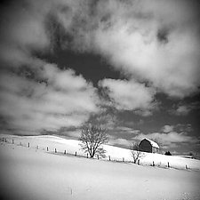 Winter Sky by Vicki Reed (Black & White Photograph)