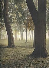 Fall Fog by Vicki Reed (Hand-Colored Photograph)
