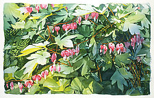 Bleeding Hearts by Marlies Merk Najaka (Giclee Print)