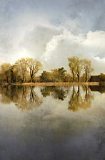 Lake Lodi II by Thea Schrack (Color Photograph)