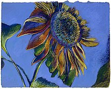 Sunset Sunflower by Jane Sterrett (Giclee Print)