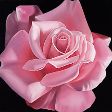 One Rose by Barbara Buer (Giclee Print)