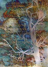 Sunset Tree #2 by Joanie San Chirico (Fiber Wall Art)