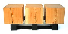 Three of a Perfect Pair by Brad Reed Nelson (Wood Coffee Table)