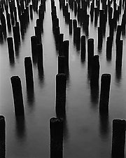 Pier Posts in Hudson by Allan Baillie (Black & White Photograph)