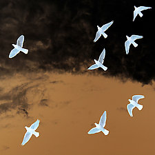 Flight by Marcie Jan Bronstein (Color Photograph)