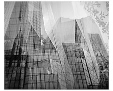 Skyscrapers- Paris by Tanya Hoggard (Black & White Photograph)