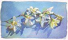Orchid by Marlies Merk Najaka (Giclée Print)