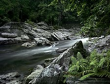 Chattooga River by Will Connor (Color Photograph)