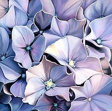 Blue Hydrangea by Barbara Buer (Giclée Print)
