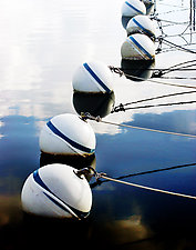 Floats by Bonnie McCann (Color Photograph)