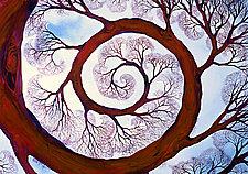 Spiral by Helen Klebesadel (Giclee Print)